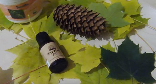 Косметические свойства масла чайного дерева