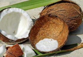Кокосовое масло в уходе за губами