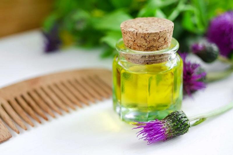 Лечебные свойства репейного масла
